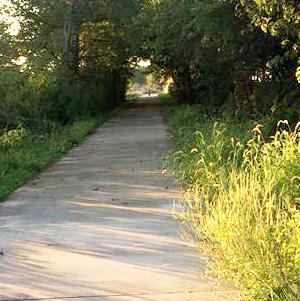 Lincoln Prairie Trail